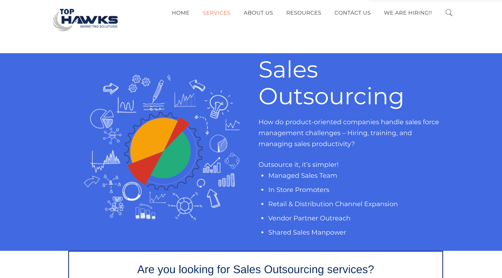 Top Hawks website – sales outsourcing company in India
