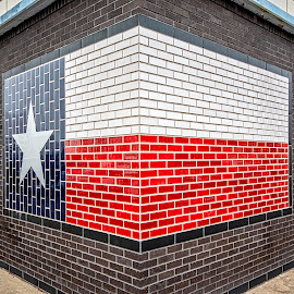 Texas by Richard Michael Lingo - Artistic Objects Signs ( flag, buildings, details, texas, architecture )