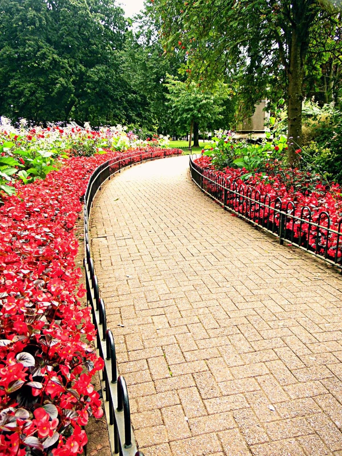 Cardiff Gorsedd Gardens flowers