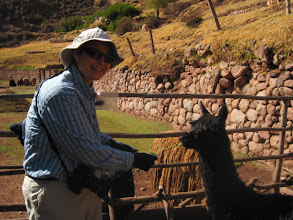 Photo: Feeding one of the alpacas at the cooperative. They use the wool to make handicrafts.
