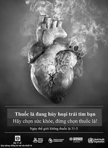 Thuốc lá thủ phạm hủy hoại trái tim