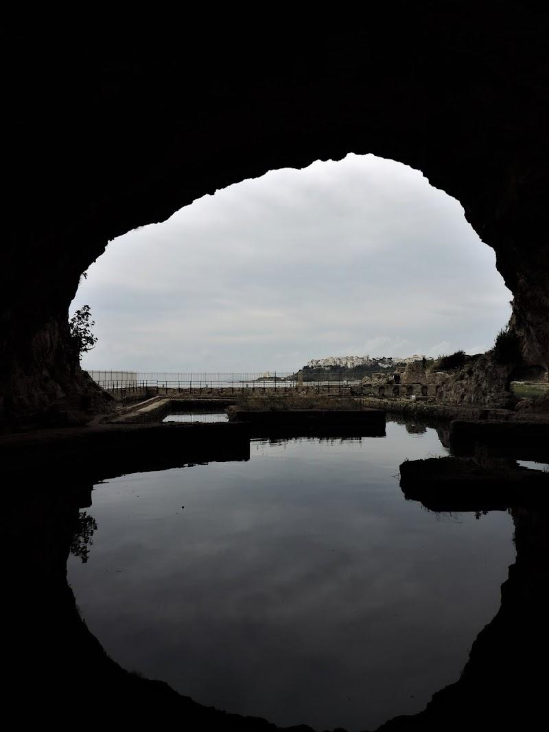 La caverna incantata di Michi