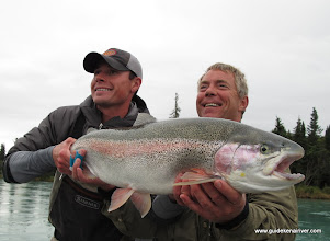 Photo: Sean Kelly's 32 x18.5 Kenai Rainbow took the bead hard. After some big runs Nigel Fox and Sean Kelly were able to put this fatty in the net. Nice fish Sean!