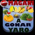 Magani A Gonar Yaro Part 2