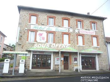 locaux professionels à Le Brugeron (63)
