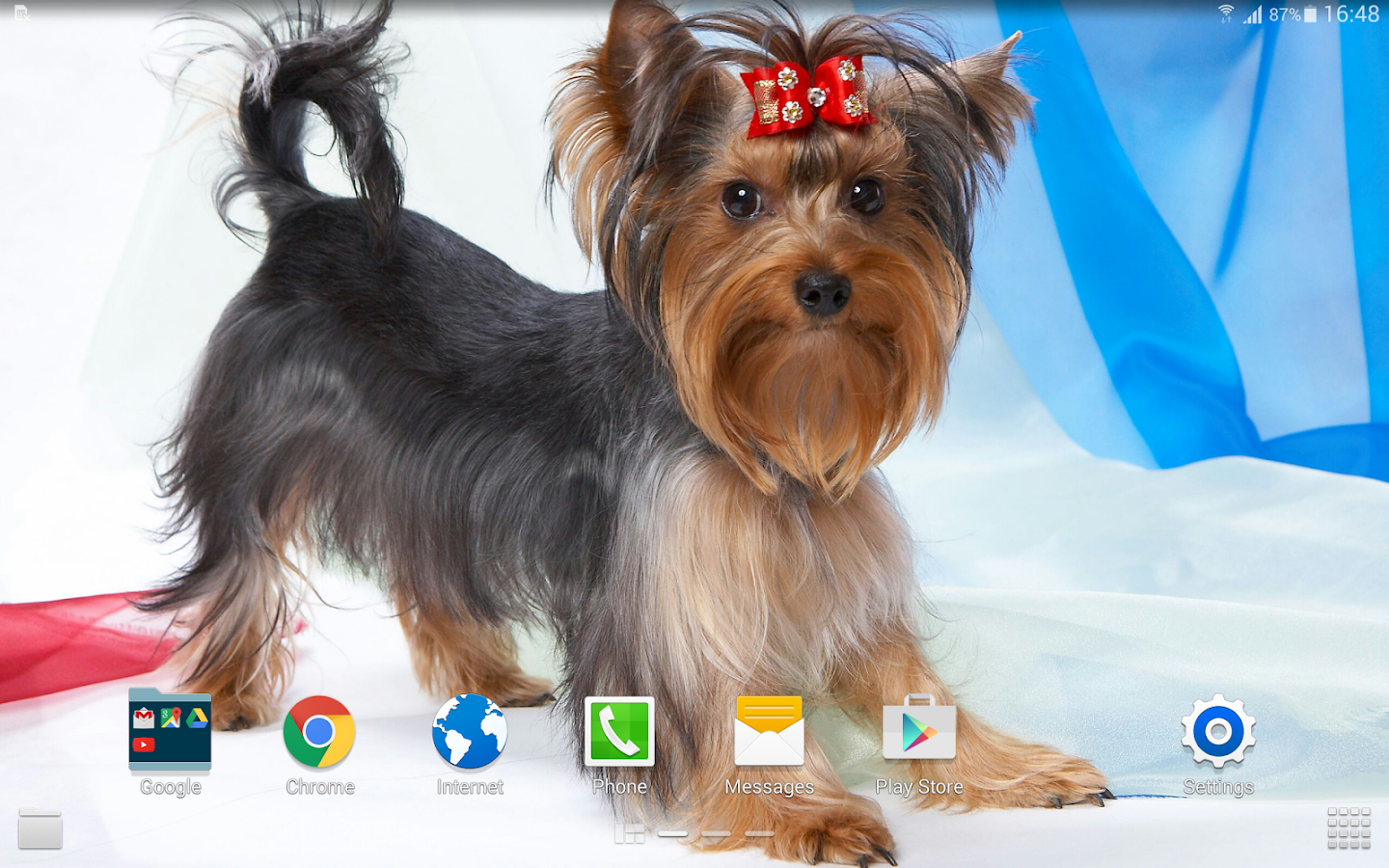 Dog Wallpaper 4k Apl Android Di Google Play