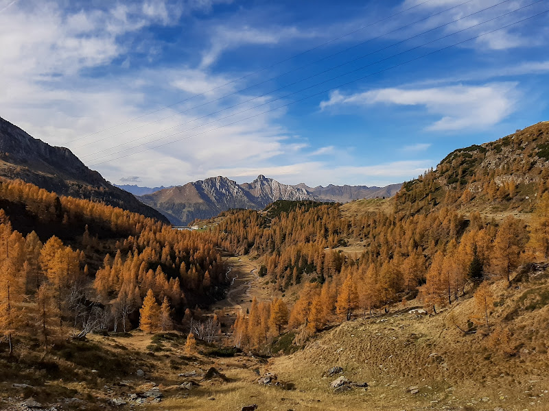 Magia d'autunno di nicole_peruta