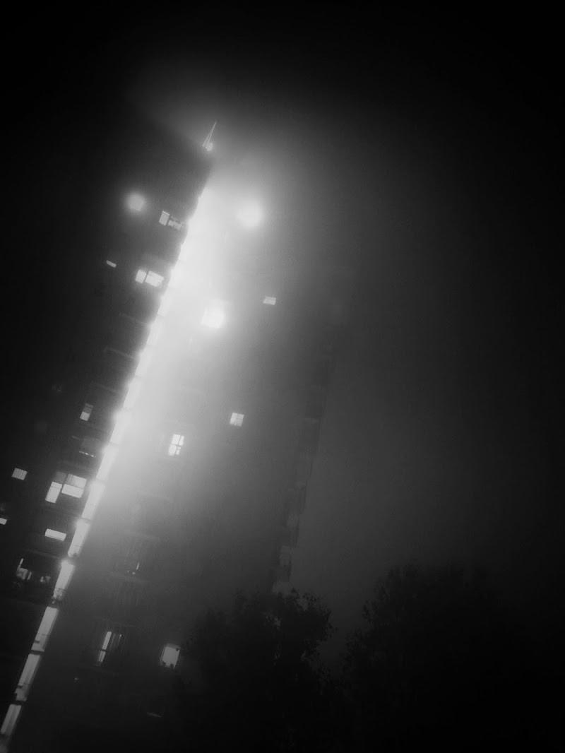 La Nebbia e la Notte di Francesca Zaia