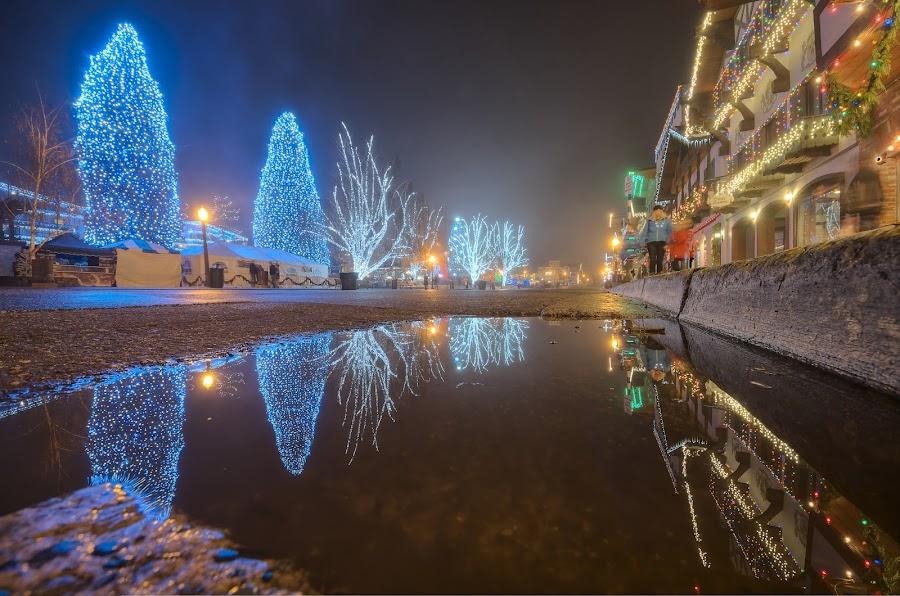 Some time around last Christmas by Thomas Born - Public Holidays Christmas ( reflection, winter, christmas lights, christmas tree )
