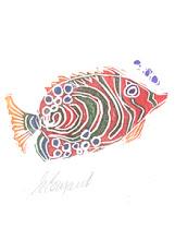Photo: Fish 3
