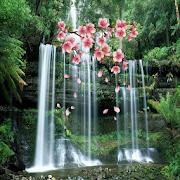 3D Waterfall Spring Branch