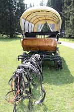 Photo: Pause aussi pour les chevaux / Auch für die Pferde eine Mittagspause