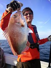 Photo: 綺麗な真鯛キャッチでした!