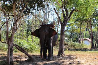 Photo: Laos Reisen, Ban Kiet Nong Elephant Camp