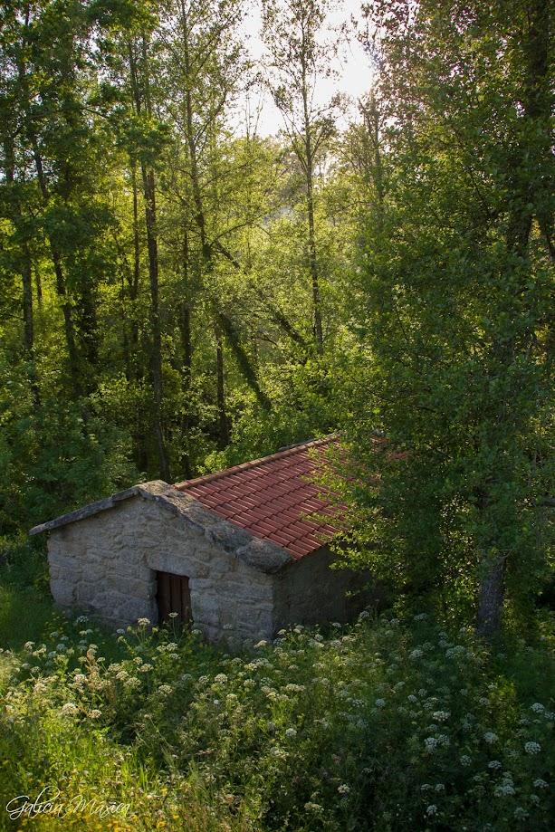 Antiguo molino reconstruido