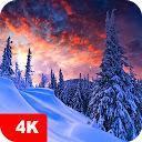 Winter Wallpaper HD Custom New Tab