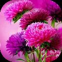 Imágenes de flores hermosas icon