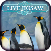 Live Jigsaws - Penguin Play