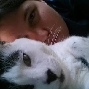 Jackie's cat.jpg