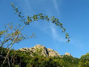 Photo: Nei pressi del Col de Paracolls, 902m.