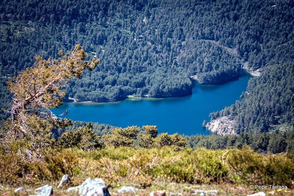 La imagen puede contener: árbol, planta, cielo, montaña, exterior, naturaleza y agua