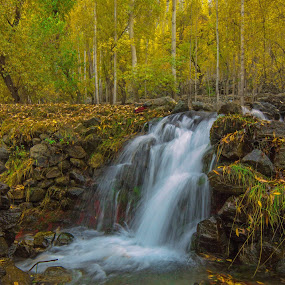 Heavenly Skardu Pakistan by Asmar Hussain - Landscapes Forests