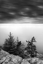 """Photo: """"Silent Sentinels"""" - http://www.createwithlightphotography.com  This is a 120 second exposure, shot from the lookout point at Lighthouse Park in West Vancouver, British Columbia.  I used a 10 stop ND filter, plus a 3 stop hard grad ND filter to separate the sea and sky, tonally speaking.  This is my contribution to the #LongExposureThursday theme, kindly curated by +Francesco Gola and +Le Quoc , the #ThirstyThursday theme, kindly curated by +Giuseppe Basile and +Mark Esguerra , the #FineArtPls theme, curated by the lovely +Marina Chen and +FineArtPls , the #BWFineArtLE theme, curated by the amazing Mr +Joel Tjintjelaar and +Black and White Fine Art Photography Gallery , #InMotionThursday curated by +Scott Thomas #RectanglesAreSexy curated by the spectacular +Athena Carey and finally the #PlusPhotoExtract theme, run by +Jarek Klimek  All thoughts and comments welcome.  Please visit my website to view more of my images: http://www.createwithlightphotography.com  #PlusPhotoExtract #GrantMurray #CreateWithLightPhotography #BWFineArtLE #FineArtPls"""