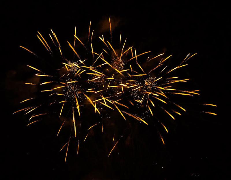 Fuochi d'artificio  di DanielaL
