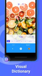 App iTranslate Translator & Dictionary APK for Windows Phone