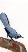 Photo: Pochoir Blue Mockingbird, 12.5 high by 6 34 wide