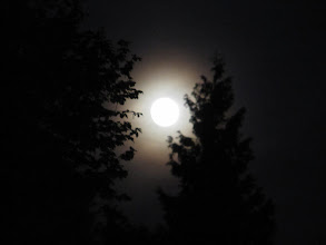 Photo: Day 27 - The Moon at the Camp Site in Kehl