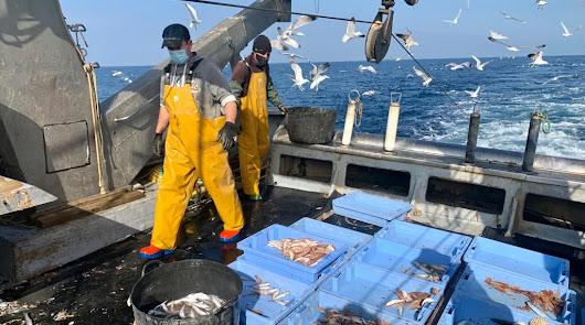 El sector pesquero pide a Bruselas que no reduzca más los días de salir a la mar