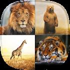 Parque zoológico Fondo Animado icon