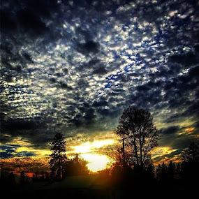 Sky trippn, Day before the windstormskyholdsthetruth by Dawn Morri Loudermilk - Uncategorized All Uncategorized ( the )