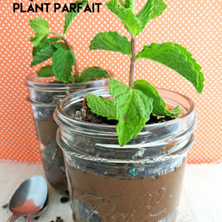 Mint Chocolate Plant Parfait