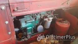 Volvo BM BM 230 foto 6