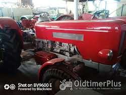 Schlüter S650 oder S400 mit Frontlader Foto 6