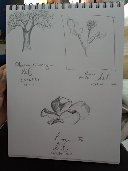 cherry tree and roses sketches by LiLi