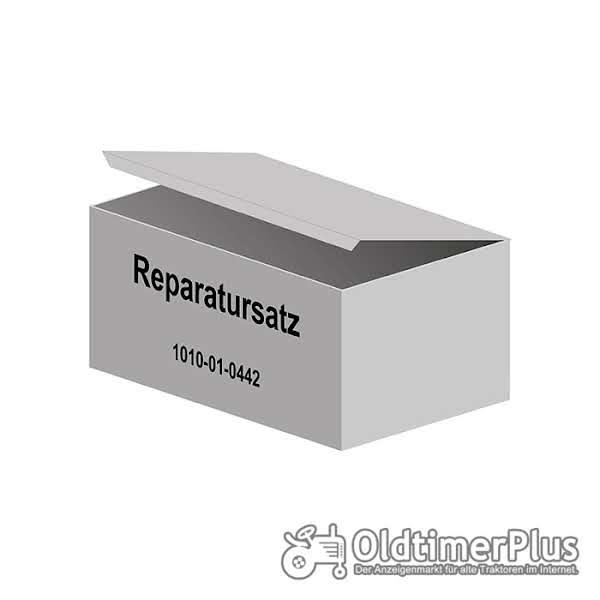 Deutz D30, D40.2, 2505, 3005, 4005, 2506, 3006, 4006, 4506, u.v.m. Reparatursatz für Hinterachse Foto 1