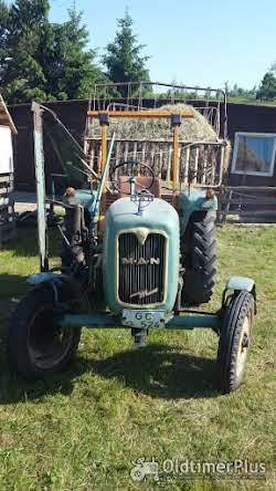 MAN 2F1 Traktor Foto 3