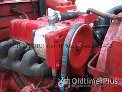 Mc Cormick IHC D 426 D432 D439 u.a. Hydraulische Lenkung Nachrüstsatz Foto 2