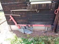 Paarden Tuig Koppel Stukken Foto 2