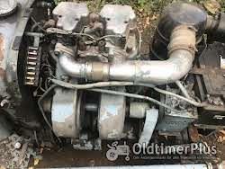 Eicher ES 202 Schmalspurtraktor Foto 3