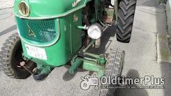 Deutz D40.2 Dreizylinder Foto 2