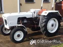 David Brown Traktor Foto 3