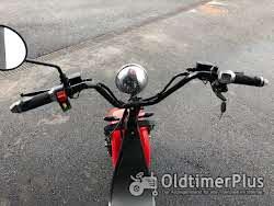 Elektro Roller 500 bis 2 000 Watt Elektro Scooter Foto 2