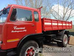 fiat tipper truck need license over 75 ton Foto 2