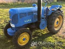 LANZ D3012(vineyard) Foto 5