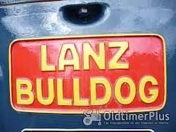 Transport Überführung von Trecker z.b. Lanz Bulldog Eilbulldog Eicher Hanomag