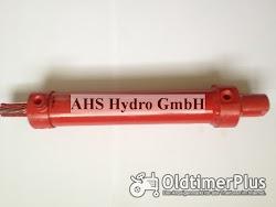 Calzoni Rcd. Ognibene IHC Lenkzylinder Case IH IHC Hydrostatic Foto 4